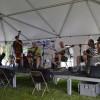 Sonny Slide at Frankford Island Blues Festival 1